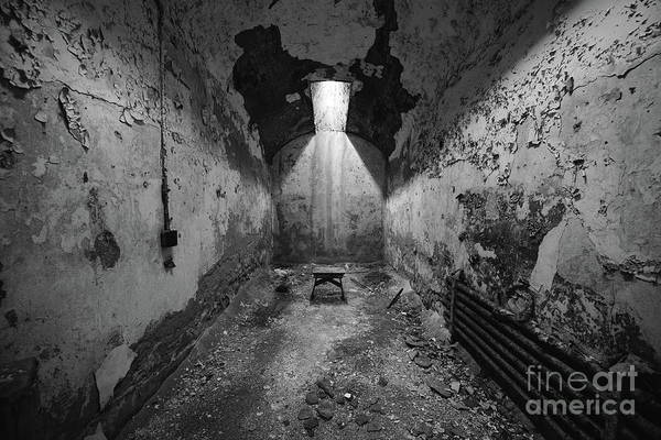 Wall Art - Photograph - The Cell Bw by Michael Ver Sprill