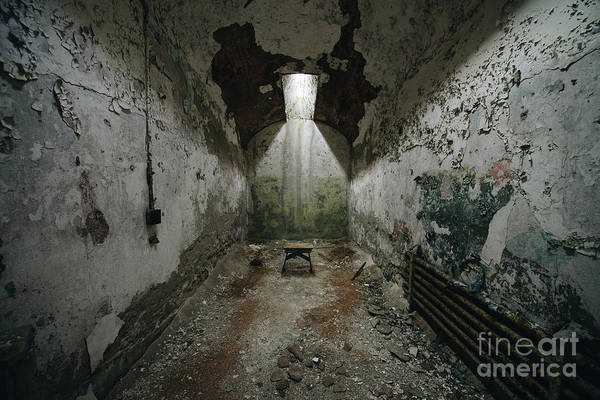 Wall Art - Photograph - The Cell  by Michael Ver Sprill