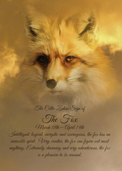Wicca Photograph - The Celtic Sign On The Fox by Stephanie Laird