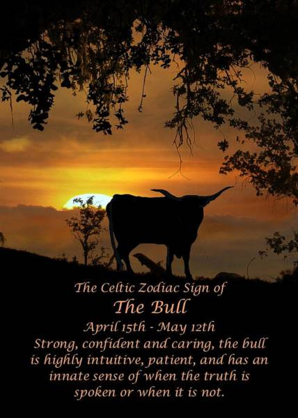 Wicca Photograph - The Celtic Zodiac Sign Of The Bull by Stephanie Laird