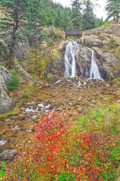 Helen Hunt Falls Photograph - The Cerise Chokecherry Leaves In The Foreground  by Bijan Pirnia