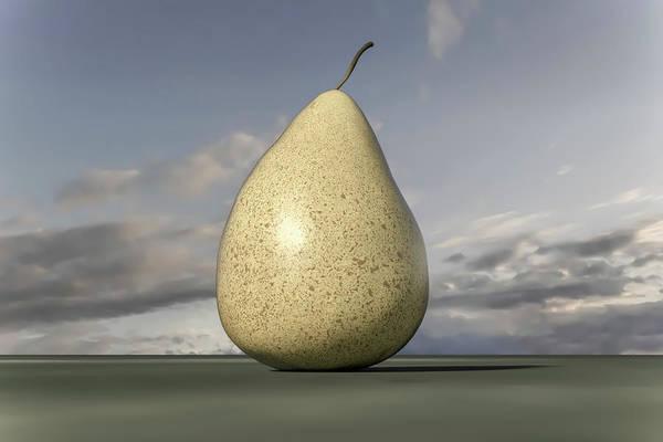 Shadow Digital Art - The Charming Pear 1 Of 2 by Betsy Knapp