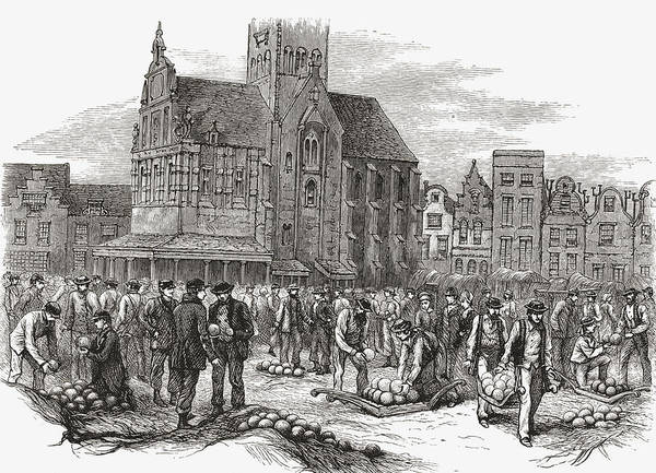 Cheese Drawing - The Cheese Market At Hoorn, The by Vintage Design Pics