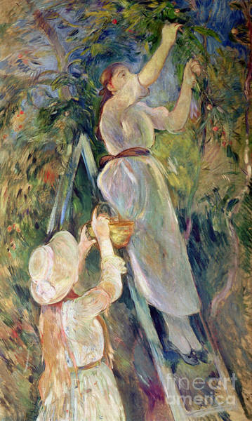 Pickers Wall Art - Painting - The Cherry Picker by Berthe Morisot