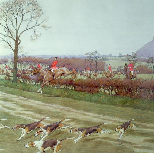 Windsor Wall Art - Painting - The Cheshire Away From Tattenhall by Cecil Charles Windsor Aldin
