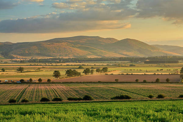 Northumbria Photograph - The Cheviots by David Taylor