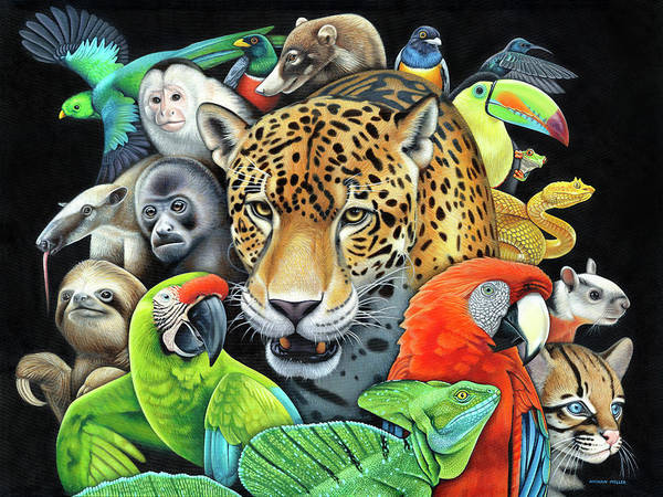 Wall Art - Painting - The Circle Of Life by Nathan Miller