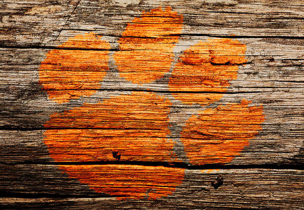 Wall Art - Mixed Media - The Clemson Tigers 1a by Brian Reaves