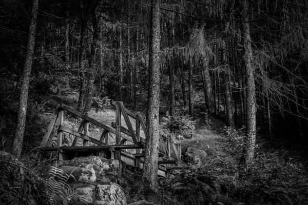 Photograph - The Climb To Ben A'an by Neil Alexander