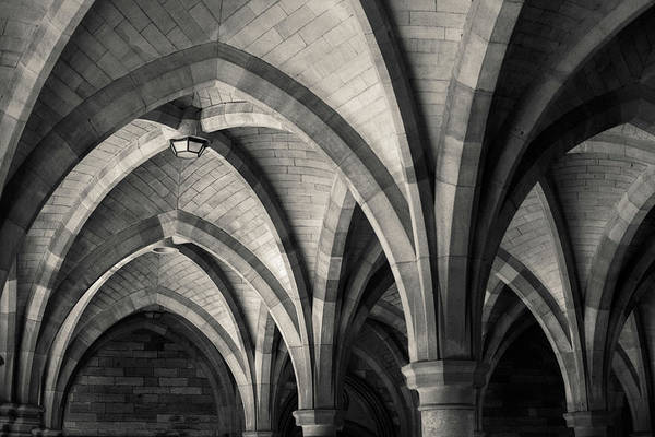 Cloister Photograph - The Cloisters by Dave Bowman