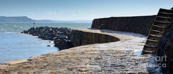Photograph - The Cobb, Lyme Regis by Colin Rayner