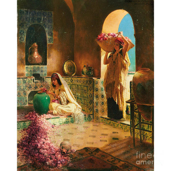 Painting - The Collection Of Roses by Celestial Images