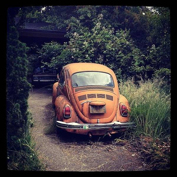 Volkswagen Photograph - The Color Of Eugene by Lisa Boylan