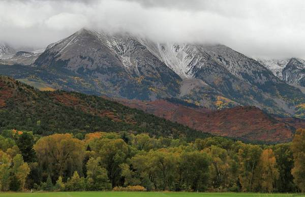 Photograph - The Colors Of Fall In Colorado by Dan Sproul
