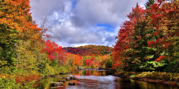 Photograph - The Colors Of Fall On The Moose River by David Patterson