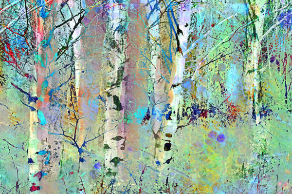 Wall Art - Photograph - The Colouring Book In The Forest by Tara Turner