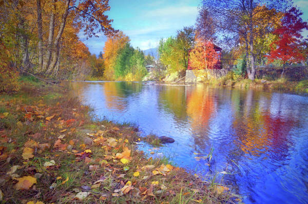 Photograph - The Colours Of October by Tara Turner