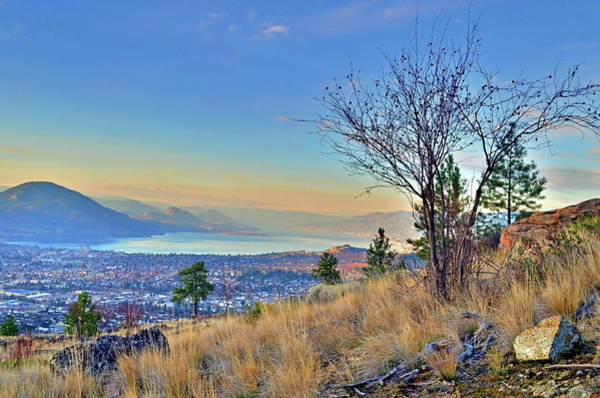 Photograph - The Colours Of Penticton by Tara Turner