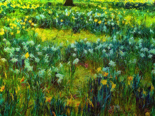 Digital Art - The Colours Of Spring by Leigh Kemp