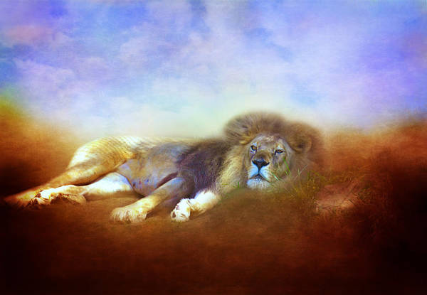 Kings Lynn Wall Art - Photograph - The Comfortable King by Lynn Bauer