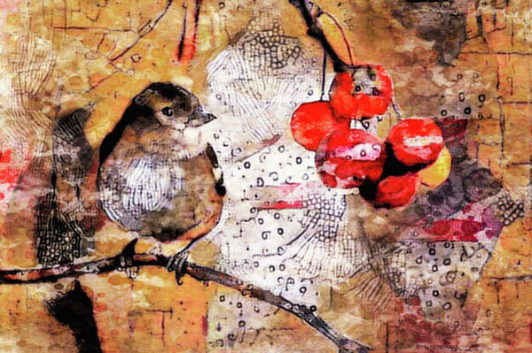 Mixed Media - The Content Sparrow by Susan Maxwell Schmidt