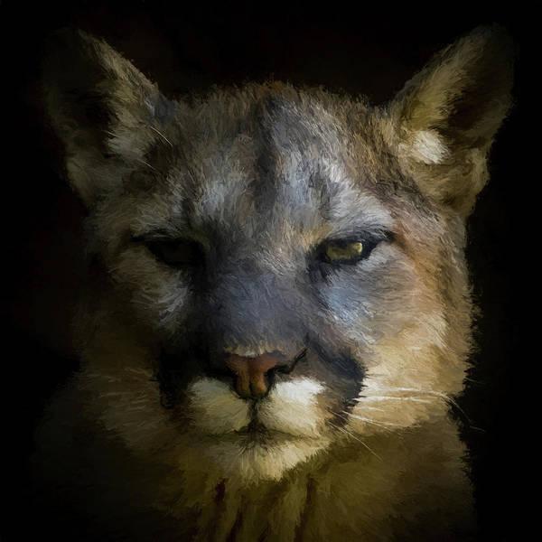 Mountain Lion Digital Art - The Cougar Da by Ernie Echols
