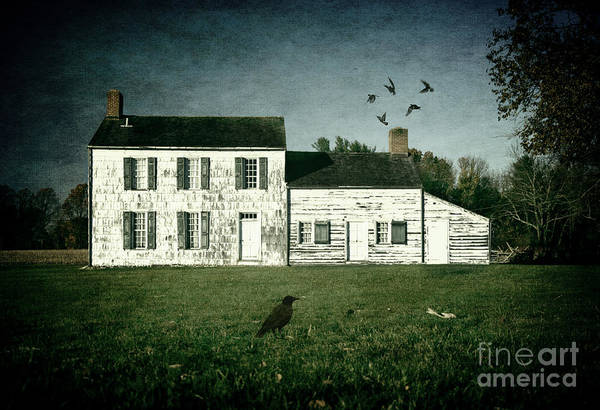 Photograph - The Craig House II by Debra Fedchin
