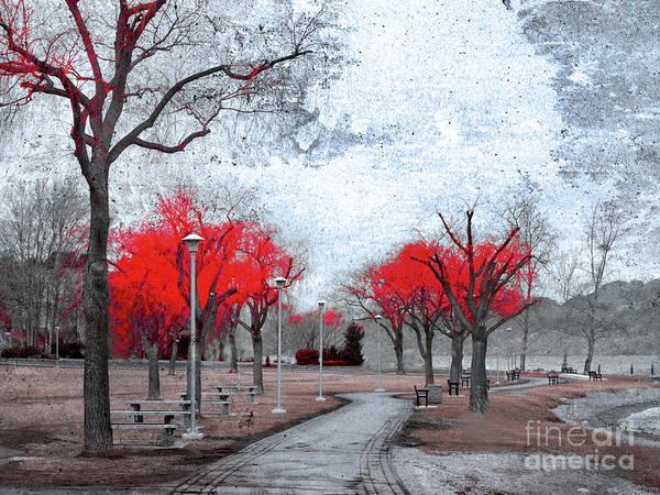 Photograph - The Crimson Trees by Tara Turner