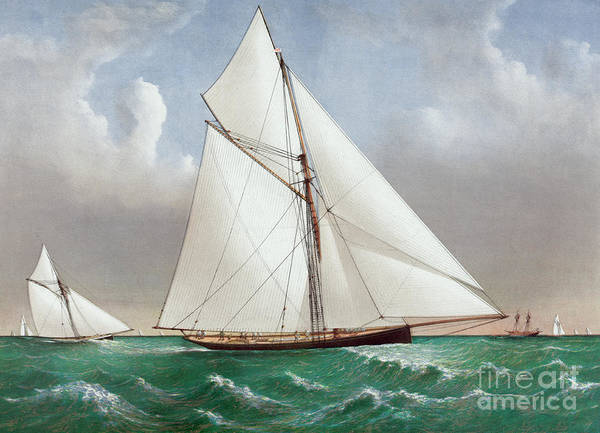 Currier And Ives Painting - The Cutter Genesta by Currier and Ives