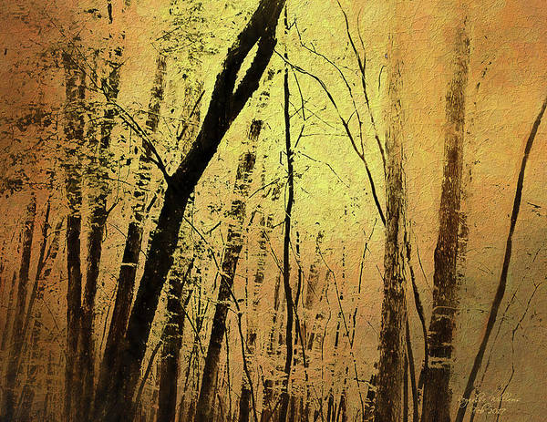 The Dawn Of The Trees Art Print