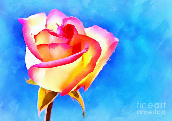 Rose Bud Photograph - The Day We Met by Krissy Katsimbras