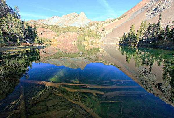 Photograph -  The Depths Of Blue Lake by Sean Sarsfield