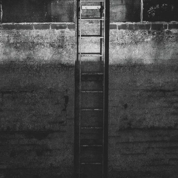 Rungs Wall Art - Photograph - The Descent by Chris Dale