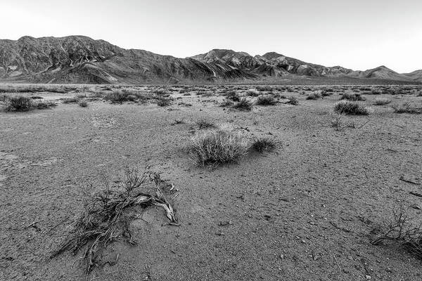 Wall Art - Photograph - The Desert Floor by Jon Glaser