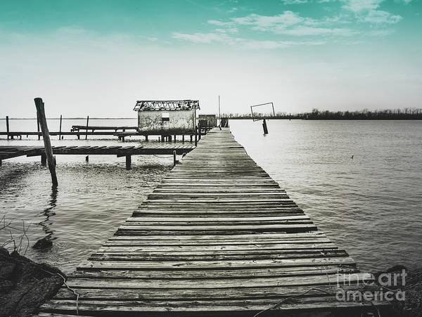 Photograph - The Dock by Janal Koenig