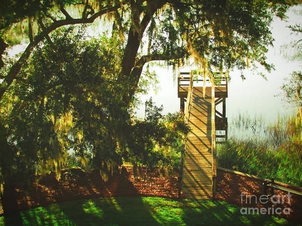 Photograph - The Dock by Robert Knight