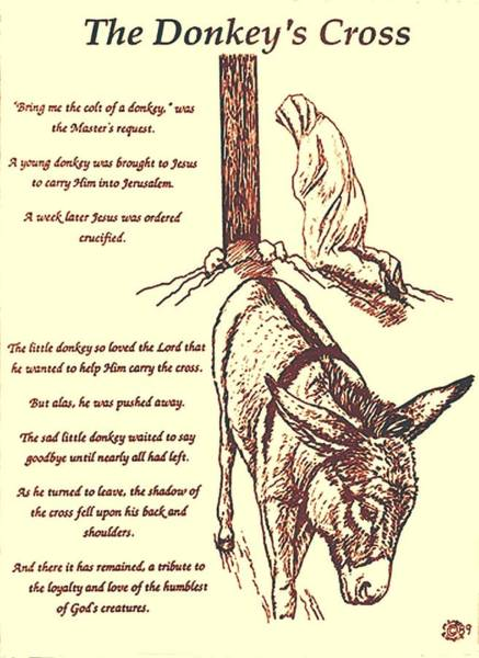 Jesus Drawing - The Donkey's Cross by Mary Singer