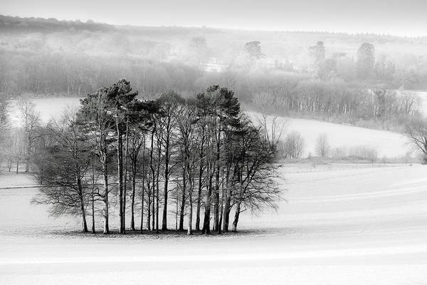 Frosty Photograph - The Downs In Winter by Ian Hufton