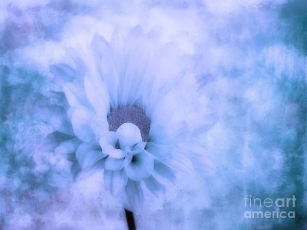Blooms Digital Art - The Dream by John Edwards