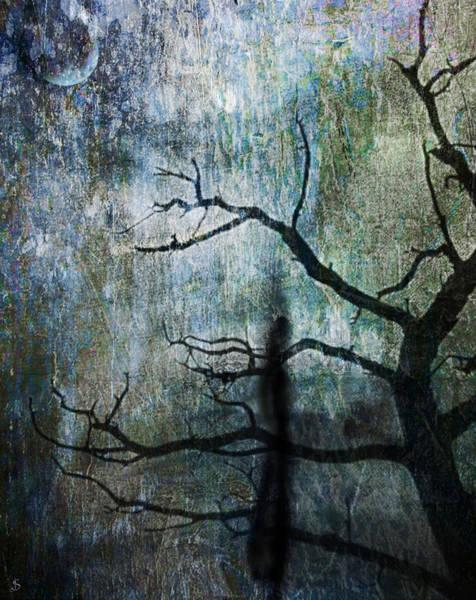 Mathew Photograph - The Dreaming Tree by Ken Walker