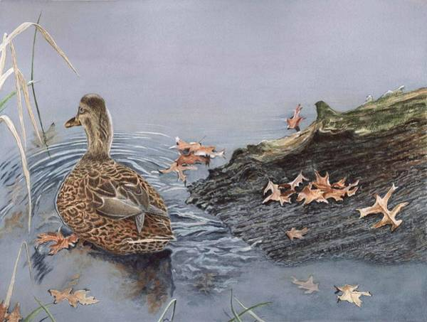 Painting - The Duck And The Alligator by Deborah Brown Maher