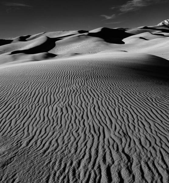 Photograph - The Dunes by Rand