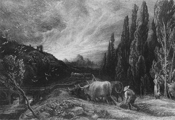 Rural Drawing - The Early Plowman by Samuel Palmer