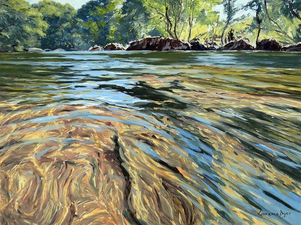 Painting - The East Dart River Dartmoor by Lawrence Dyer