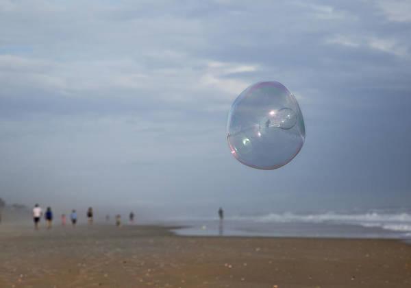 Wall Art - Photograph - The Egg Bubble by Betsy Knapp