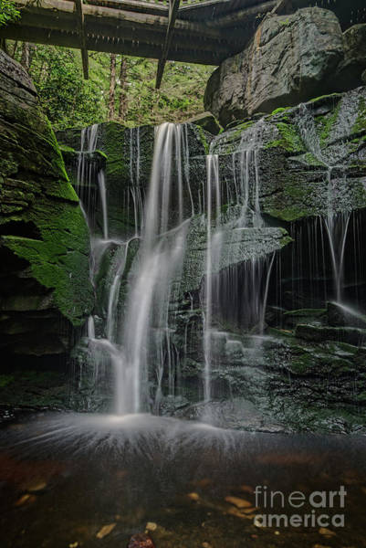 Photograph - The Elakala Falls Are A Series Of Four Waterfalls Of Shays Run by Dan Friend