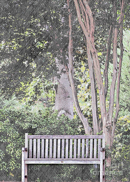 Park Bench Mixed Media - The Empty Bench by Sherry Hallemeier