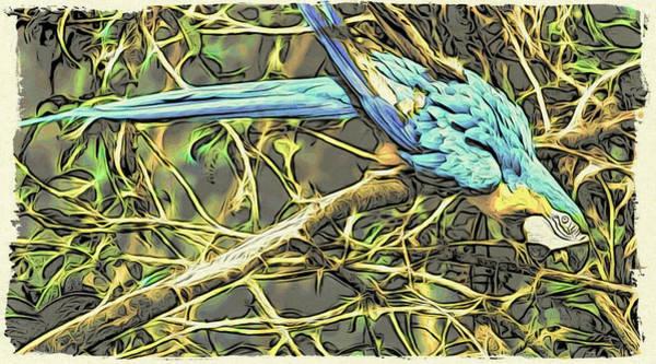 Digital Art - The Enchanted Jungle by Cameron Wood