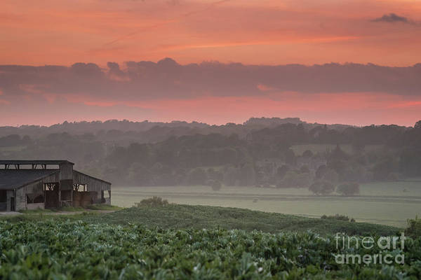 Photograph - The English Landscape 2 by Perry Rodriguez