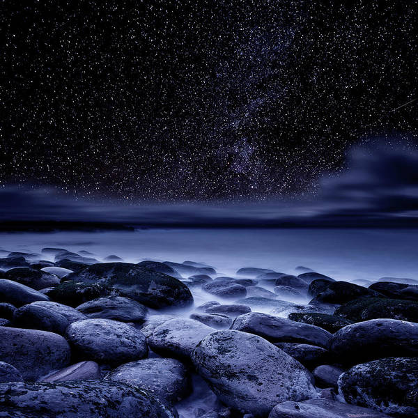 Wall Art - Photograph - The Essence Of Everything by Jorge Maia